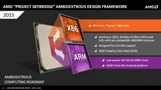 AMD_Project_Skybridge_01